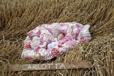 Baby im Kornfeld. Das Baby liegt auf einer weichen Decke. Es schläft friedlich. Auf einem Holzbrett steht mit Kreide der name des Babies.