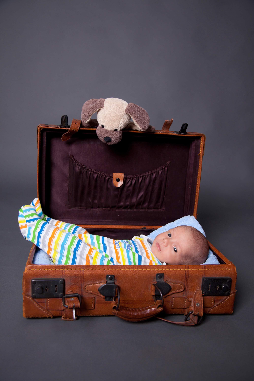 Das Baby liegt mit gestreiftem Strampler im braunen, kleinen Koffer. Ein Plüschhund guckt über den Rand.