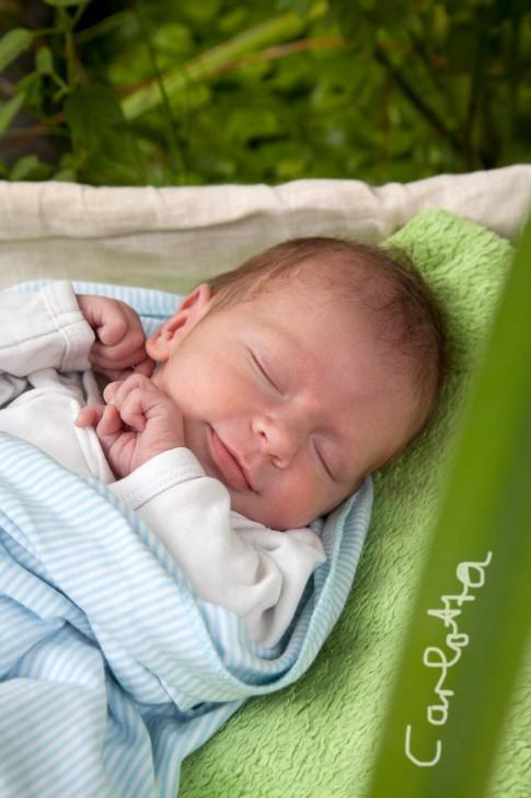 Das Baby schläft friedlich und lächeln im Garten. Es liegt auf einer grünen Decke. Auf einem frisch-grünem Blatt steht der Name des Babies.